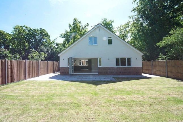 3 bed detached bungalow to rent in Queens Road, Hersham, Walton-On-Thames KT12