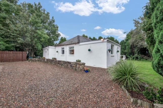 Thumbnail Bungalow for sale in Sauchenford Holdings, Sauchenford, Plean, Stirling