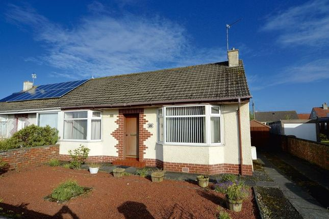 Thumbnail Semi-detached bungalow for sale in Springfield Avenue, Prestwick