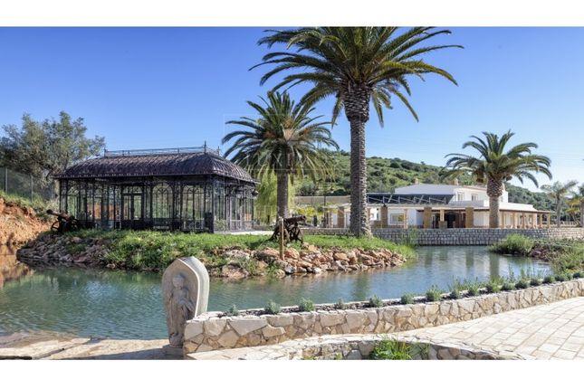 Thumbnail Detached house for sale in Estômbar E Parchal, Estômbar E Parchal, Lagoa (Algarve)