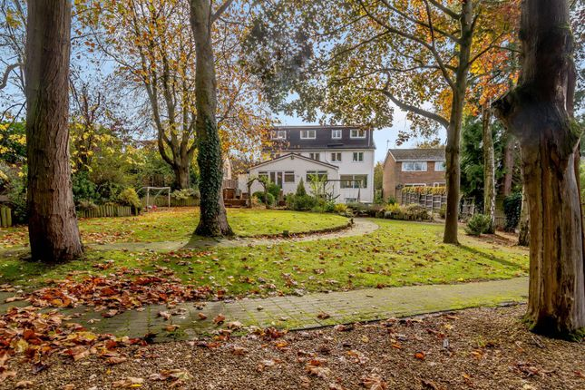 Thumbnail Detached house for sale in Park Road, Hagley, Worcestershire