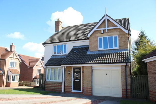 Thumbnail Detached house to rent in Fearnhead, Marton-In-Cleveland, Middlesbrough
