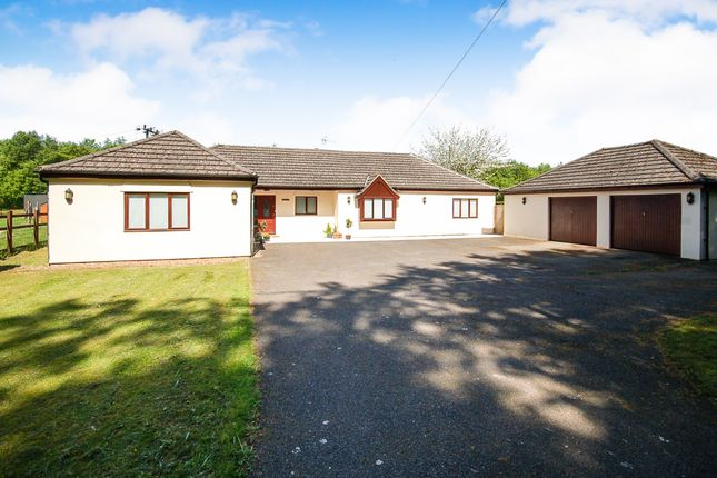 Thumbnail Detached bungalow for sale in Methwold Road, Cranwich, Norfolk