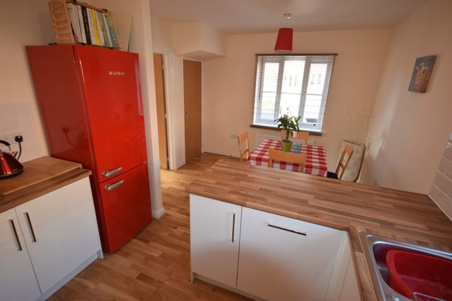 Thumbnail Semi-detached house to rent in Mead Cross, Cranbrook, Exeter
