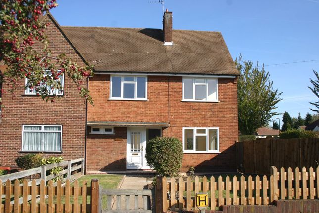 Thumbnail Semi-detached house to rent in Repton Road, Orpington