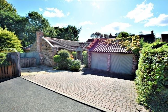 Thumbnail Detached bungalow for sale in Manor Road, Mears Ashby, Northampton