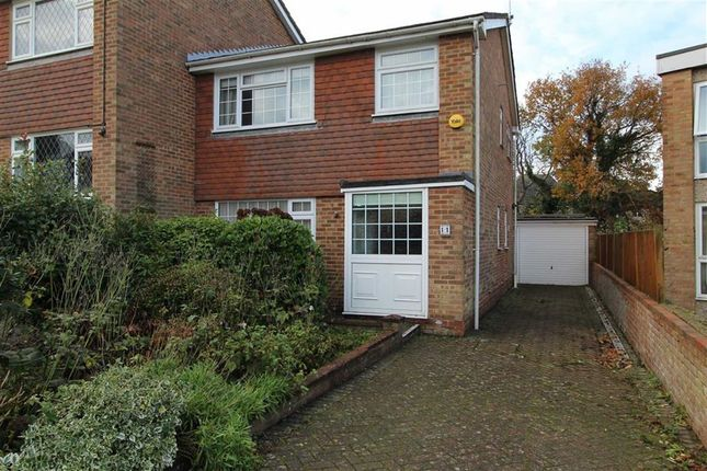 Thumbnail Semi-detached house for sale in Sedlescombe Gardens, St Leonards-On-Sea, East Sussex