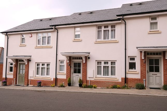 Thumbnail Terraced house for sale in Mary Munnion Quarter, Chelmsford