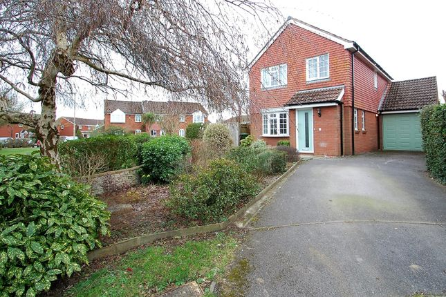 Thumbnail Detached house to rent in Woodlark Gardens, Petersfield