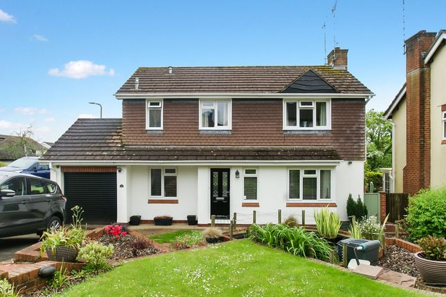 Thumbnail Detached house for sale in Steed Close, Paignton