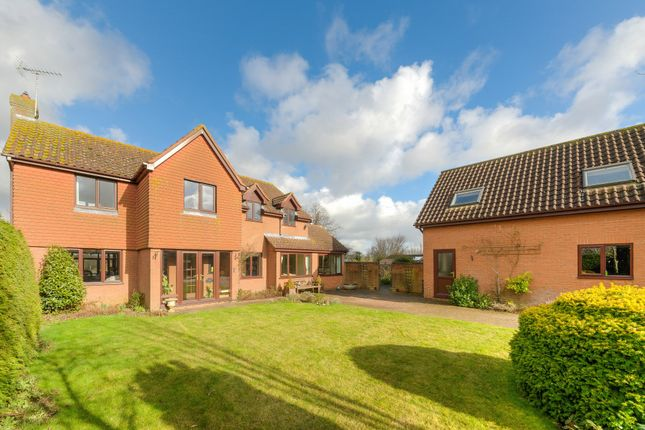 Thumbnail Detached house for sale in Stanbrook Way, Yielden, Bedford, Bedfordshire
