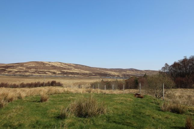 Our View of Altnaharra, Altnaharra, Lairg, Sutherland IV27