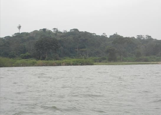 Thumbnail Property for sale in Rs10199 Island On Lake Victoria