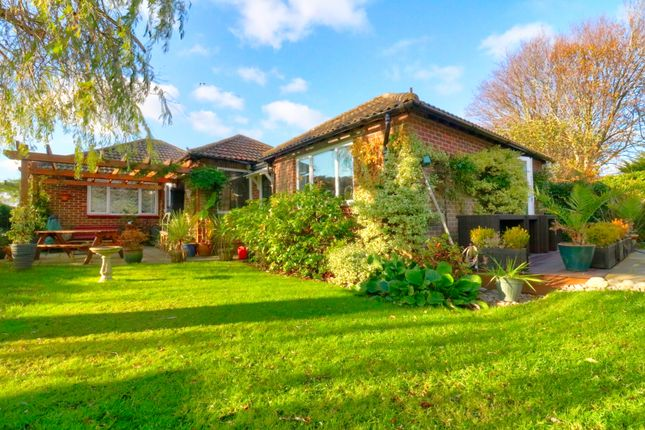 Thumbnail Bungalow for sale in Friars Pond Road, Catisfield, Fareham
