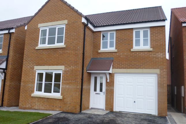 Thumbnail Detached house to rent in Willow Tree Way, Wickersley
