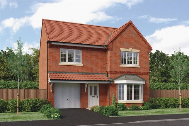 "Thumbnail Detached house for sale in ""Hollingwood"" at Warwick Road, Kibworth"