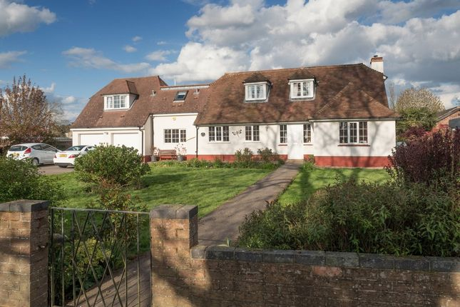 Thumbnail Property for sale in Woodland Avenue, Worlingham, Beccles