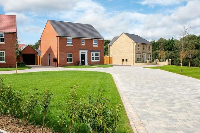 "Thumbnail Detached house for sale in ""Bradgate"" at Ellerbeck Avenue, Nunthorpe, Middlesbrough"