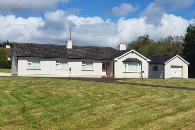 Thumbnail Bungalow for sale in Cloghoge, Swanlinbar, Cavan