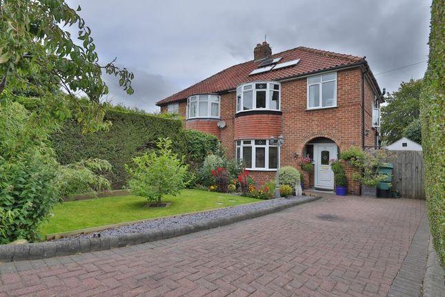 Thumbnail Semi-detached house to rent in Lead Lane, Ripon