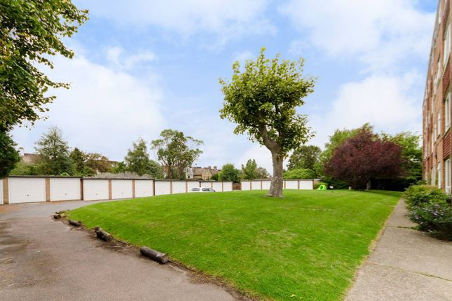 Thumbnail Flat to rent in Ashburton Road, East Croydon, Croydon