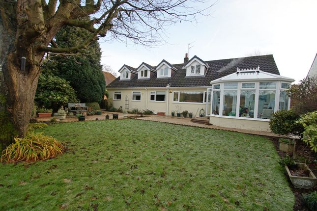 Thumbnail Detached house for sale in North Side, Shadforth, Durham