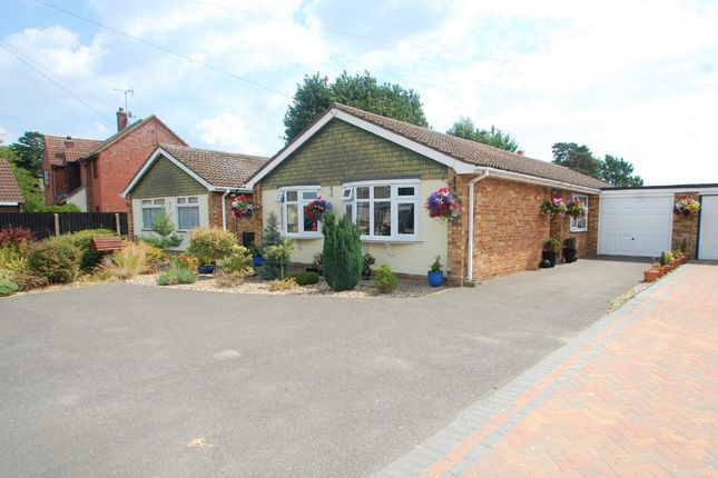 Thumbnail Detached bungalow for sale in Rectory Road, Tiptree, Colchester