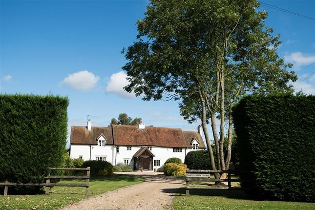Thumbnail Detached house for sale in Whistley Green Cottage, Hurst
