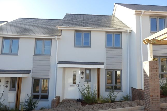 Thumbnail Terraced house to rent in Primrose Hill, Torquay