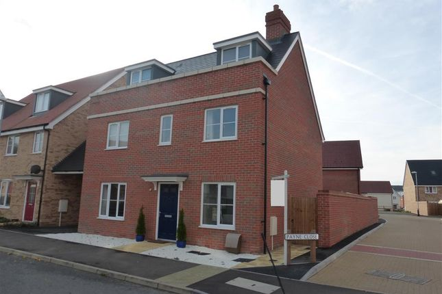 Thumbnail Detached house to rent in Haygreen Road, Witham