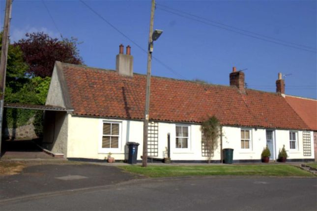 Thumbnail Cottage for sale in Tenter Hill, Wooler, Northumberland