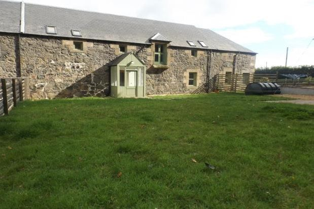 Thumbnail Semi-detached house to rent in Newburgh, Cupar