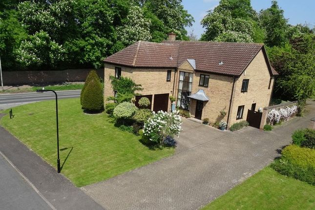 Thumbnail Detached house for sale in Swan Grove, Exning, Newmarket, Suffolk