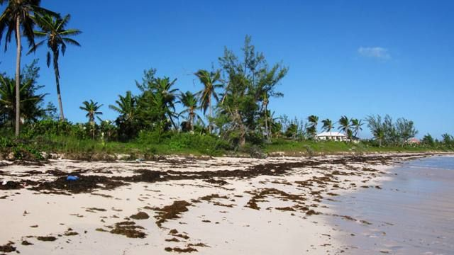 Double Bay, Eleuthera, The Bahamas