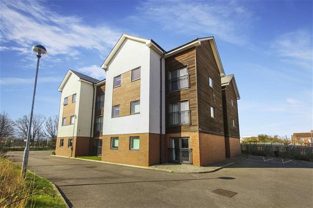 Thumbnail Flat to rent in Druridge House, North Shields, Tyne And Wear
