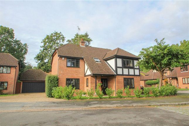 Thumbnail Detached house for sale in Napier Drive, Camberley, Surrey