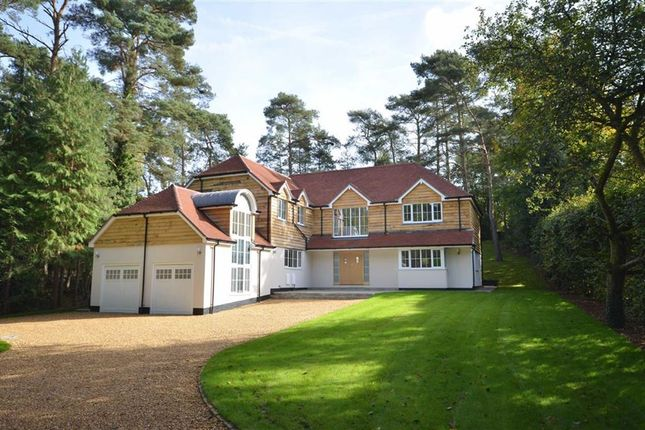 Thumbnail Detached house for sale in Forest Drive, Lower Bourne, Farnham