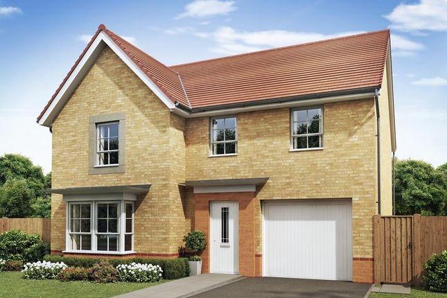 "Thumbnail Detached house for sale in ""Haltwhistle"" at The Ridge, London Road, Hampton Vale, Peterborough"