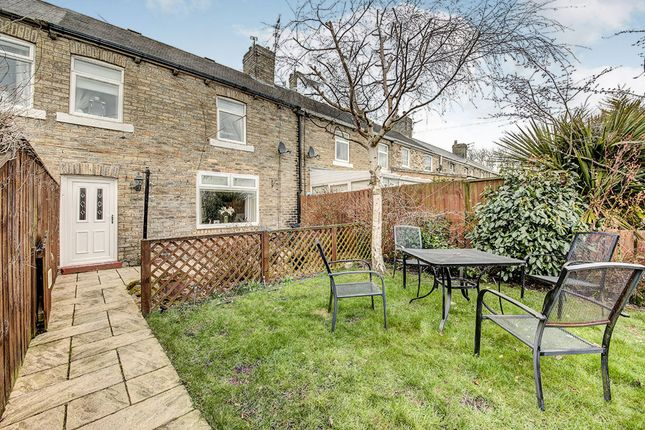 Thumbnail Terraced house to rent in Eleventh Row, Ashington
