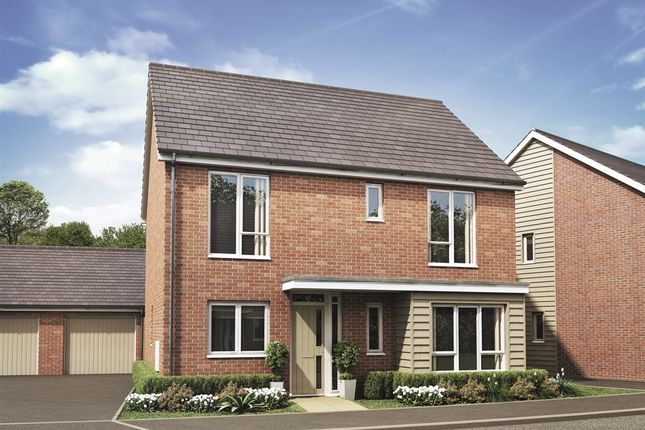 Thumbnail Detached house for sale in Hilton Valley, The Mease, Hilton, Derby