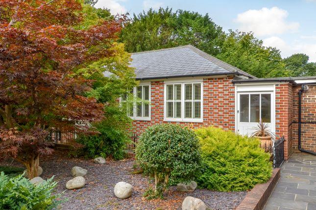 Thumbnail Cottage for sale in Blendworth Lane, Horndean, Waterlooville