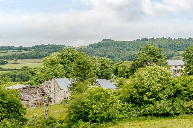 Thumbnail Detached house for sale in Marshwood, Bridport, Dorset