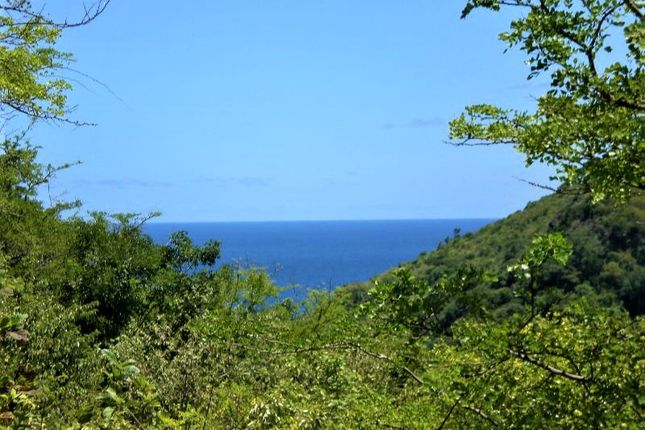 Thumbnail Land for sale in Ans-Lpre-S-31404, Dauphin, St Lucia