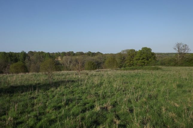 Thumbnail Land for sale in Cottenden Road, Stonegate, Wadhurst