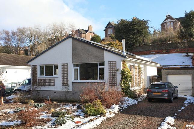 Thumbnail Bungalow for sale in Ryan Place, Crieff