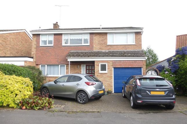 Thumbnail Link-detached house to rent in Sorrell Close, Little Waltham, Chelmsford