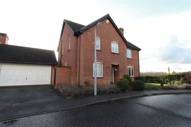 Thumbnail Detached house for sale in Bristol Close, Rayleigh, Essex