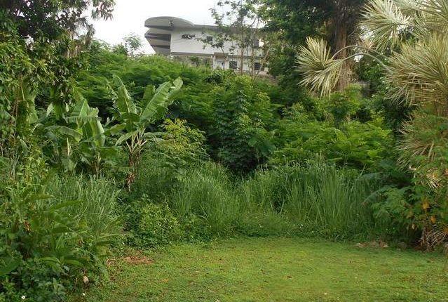 Land for sale in Kingston, Saint Andrew, Jamaica