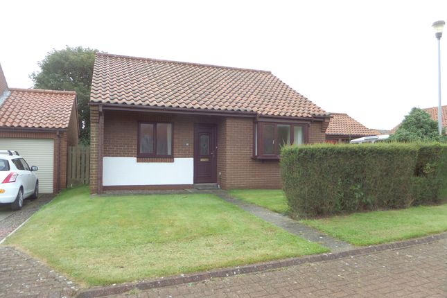 2 bed detached bungalow for sale in Castle Wynd, Bamburgh