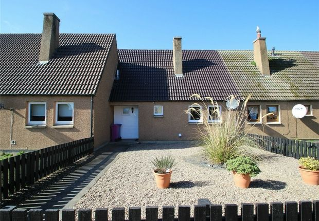 Thumbnail Terraced house to rent in 34 Bailey Place, Lossiemouth, Moray